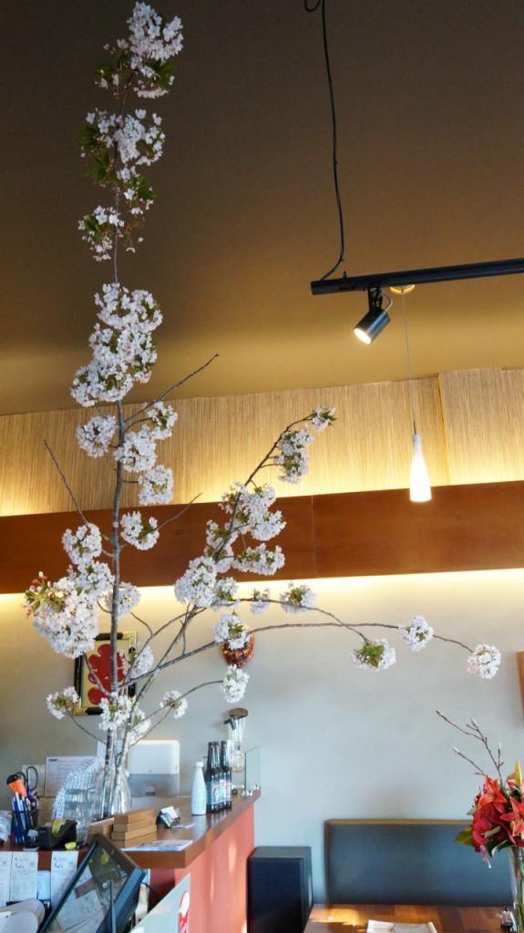 サクラサク - TANTO Japanese Dining - Japanese Restaurant Epsom Auckland